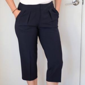 Aritzia Babaton Tailored Pant